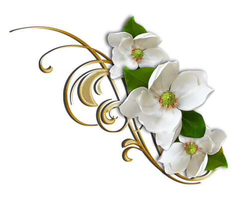 White_Flower_with_Gold_Decorative_Elemant_Clipart.png